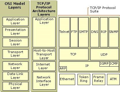IP地址和MAC地址的关系