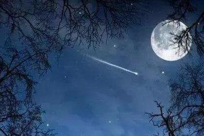 圆圆的月亮像什么句子?